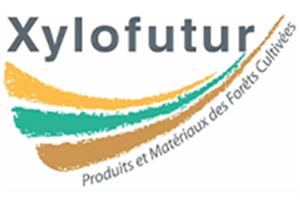 Xylofutur Produits et Matériaux des Forets Cultivées