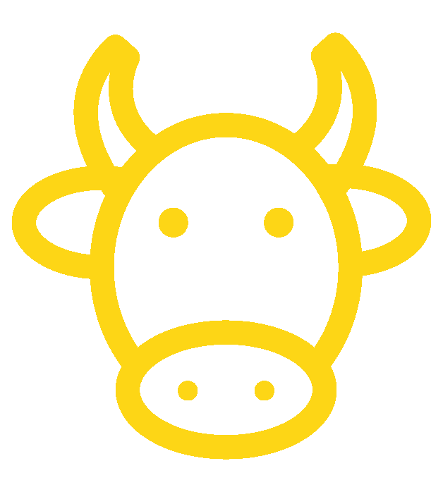 bétail