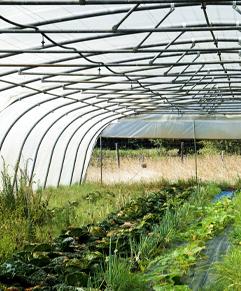 irrigation de culture avec pompe solaire autonome